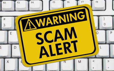 How To Spot An Online Business Scam 🕵️♀️